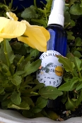 Lemon Orange Blossom Body/Linen Spray